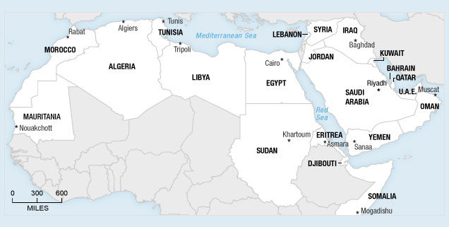 arab-countries-in-transition